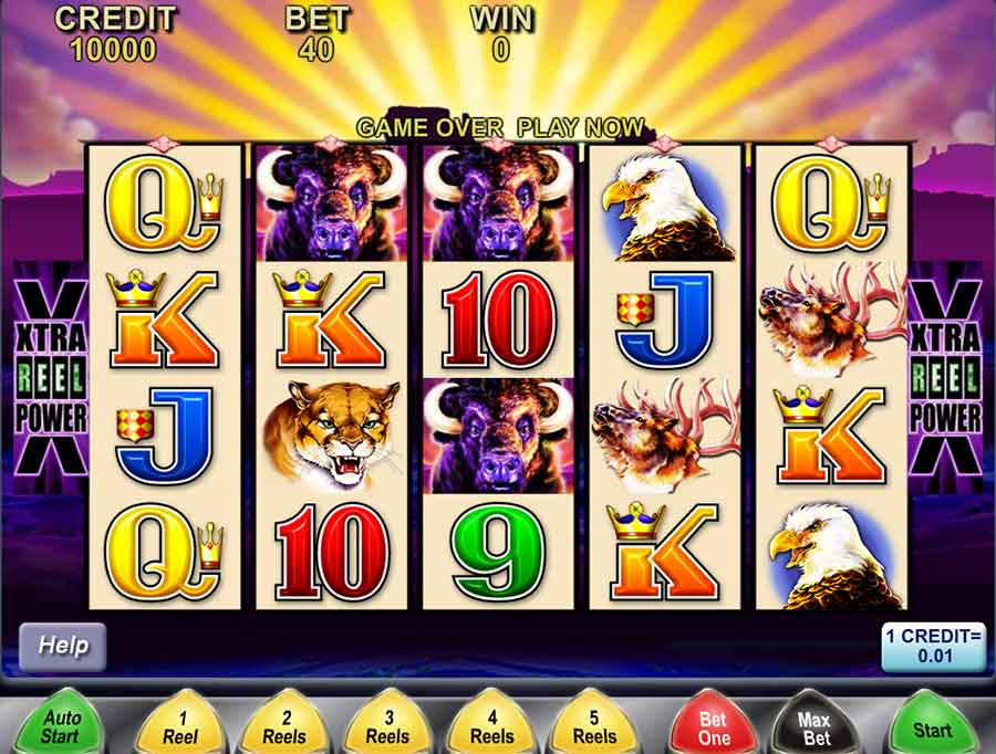 How to Play Buffalo Slots