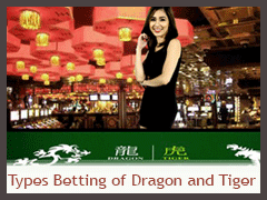 Types Betting of Dragon and Tiger banner