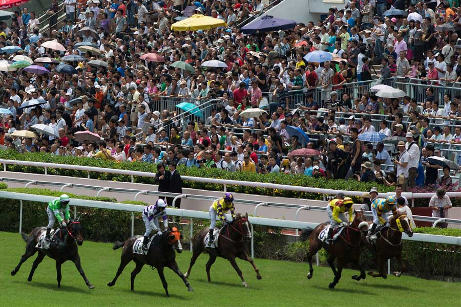 Horse Racing Online Betting